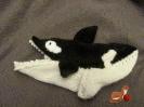 Orcasöckchen